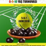 ZEYTİNLİK FESTİVALİ GBTK PUANSIZ 8-9-10 YAŞ TENİS TURNUVASI…